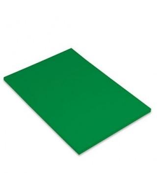 Cartulina A-3 verde abeto- CANSON - 200040209