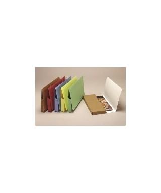 Subcarpetas Pocket amarillo huevo folio-- 400040683