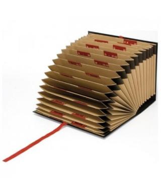 Carpeta fuelle cartón 20 departamentos- GRAFOPLAS