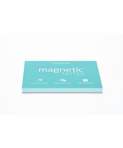 100 Magnetic Note L 200x100mm Aqua