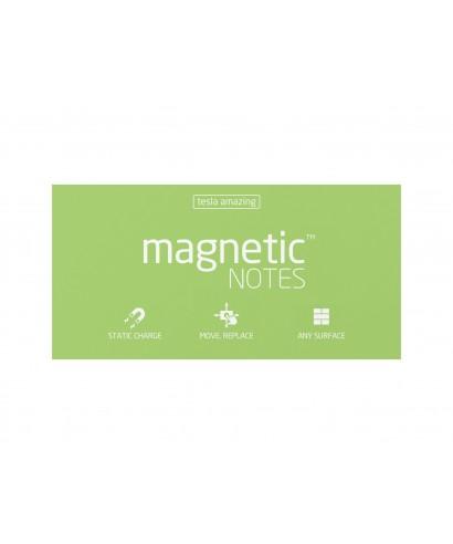 100 Magnetic Note L 200x100mm Mint