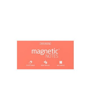 100 Magnetic Note L 200x100mm Spring