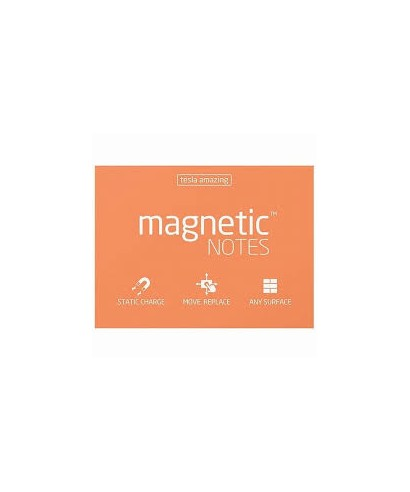 100 Magnetic Note M 100x70mm Peachy