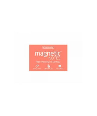 100 Magnetic Note M 100x70mm Spring