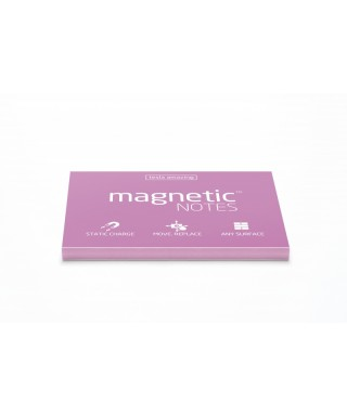 100 Magnetic Note M 100x70mm Rosa