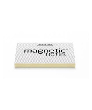 100 Magnetic Note M 100x70mm Transparente