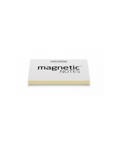 100 Magnetic Note M 100x70mm Transparent
