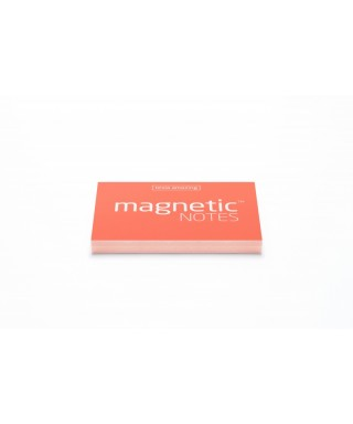 100 Magnetic Note S 70X50mm Spring