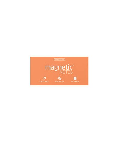 100 Magnetic Note L 200x100mm Peachy