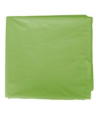 disfraz 65x90 verde claro