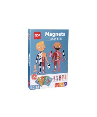 Puzzle magnetico- cuerpo humano APLI