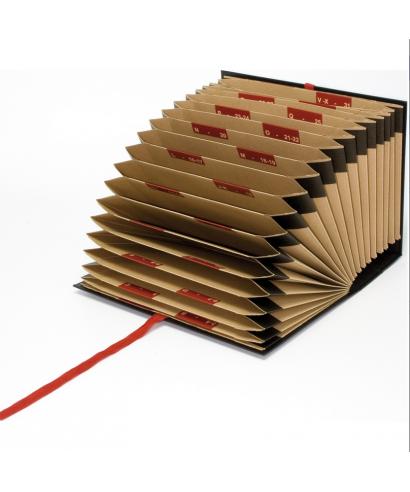 Carpeta fuelle cartón 20 departamentos- 02921010